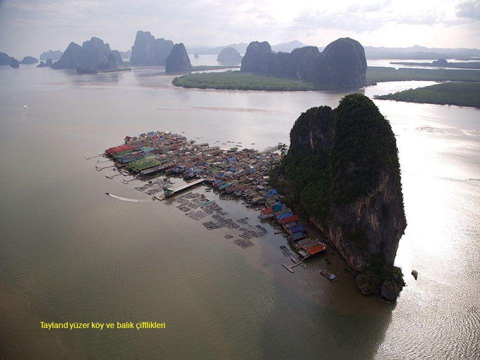 Tayland yüzer köy ve balık çiftlikleri
