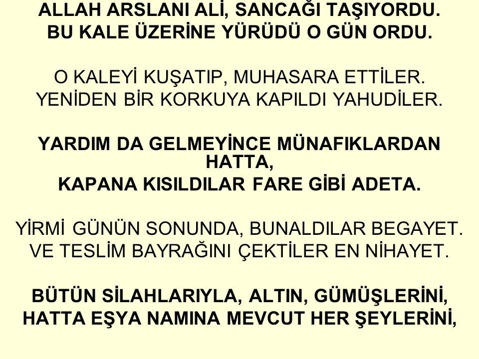 ALLAH ARSLANI ALİ, SANCAĞI TAŞIYORDU.