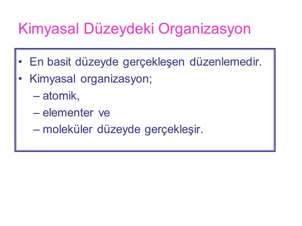 Kimyasal Düzeydeki Organizasyon