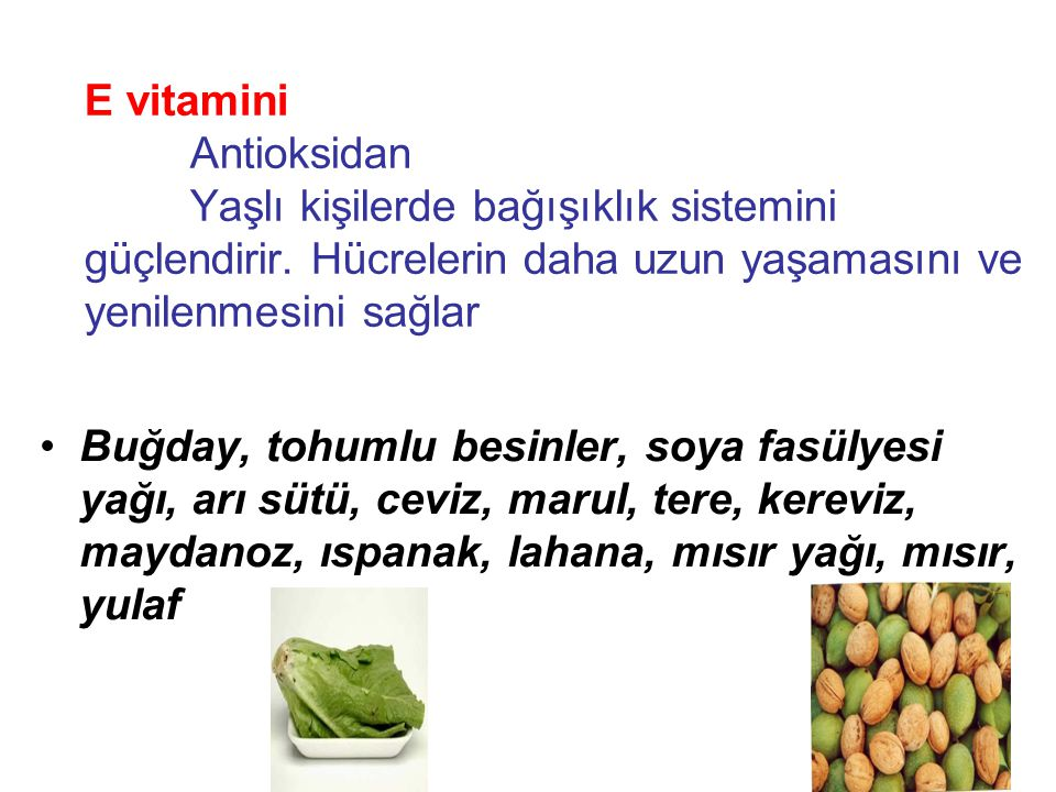 E vitamini. Antioksidan
