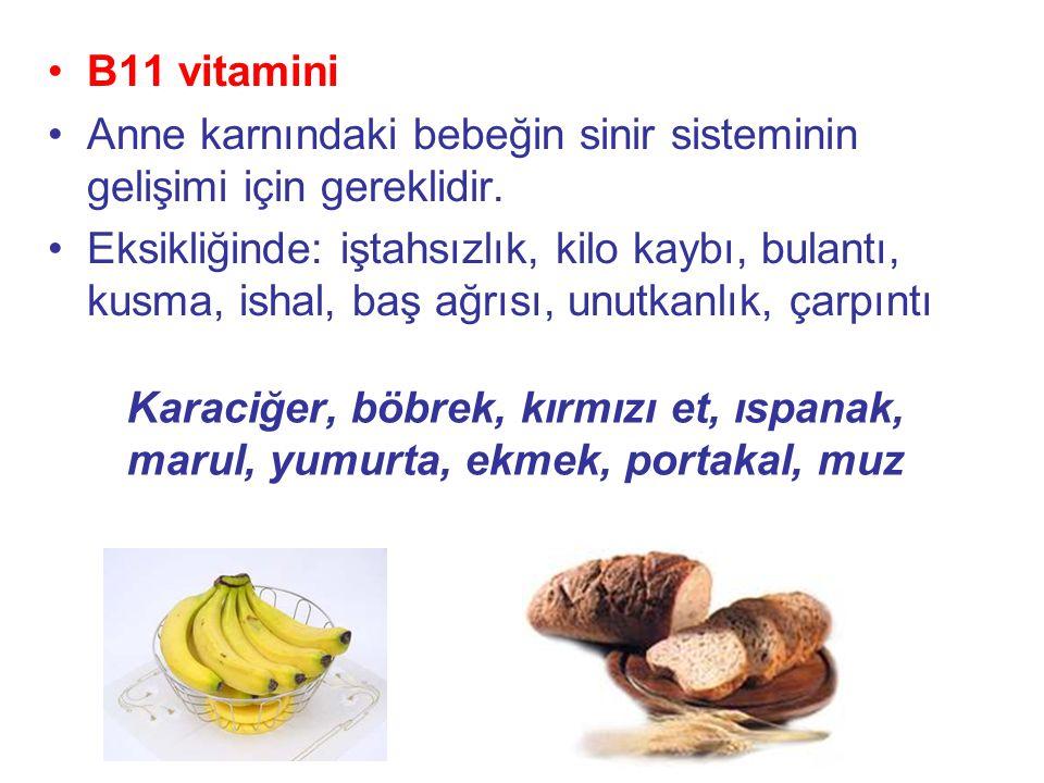 B11 vitamini Anne karnındaki bebeğin sinir sisteminin gelişimi için gereklidir.