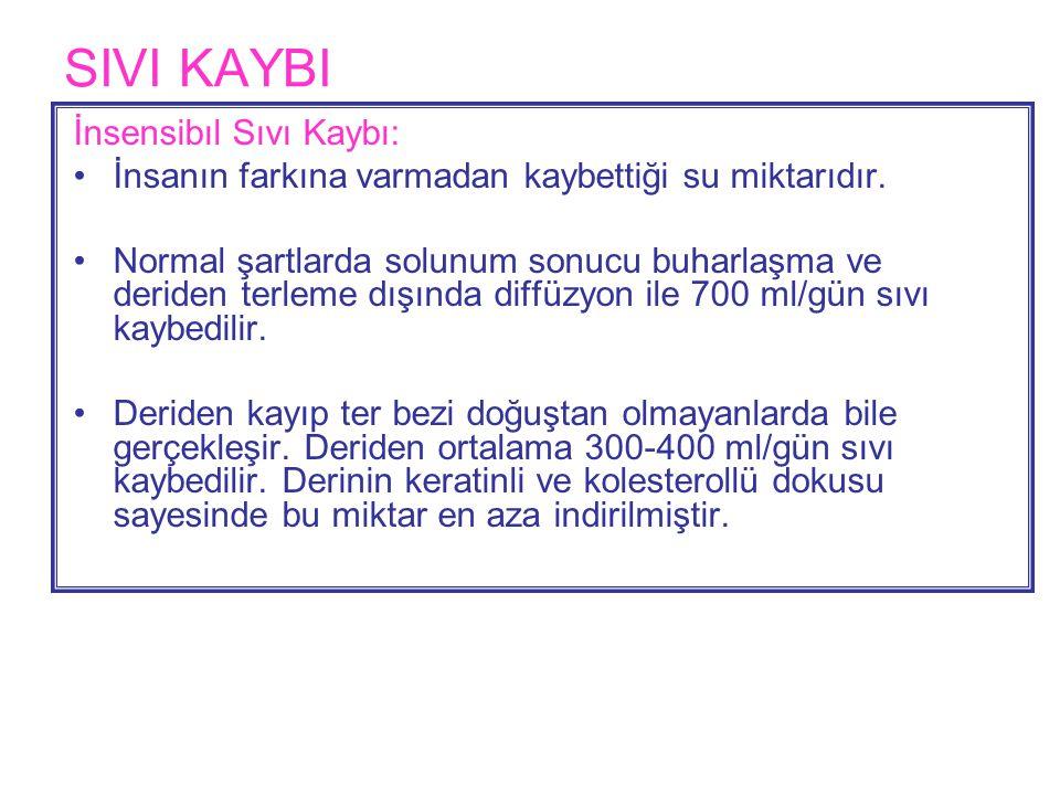 SIVI KAYBI İnsensibıl Sıvı Kaybı: