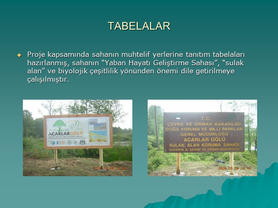 TABELALAR