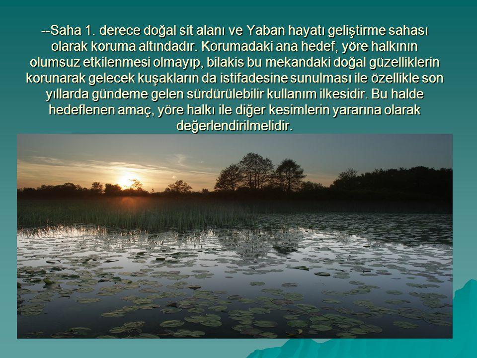 --Saha 1. derece doğal sit alanı ve Yaban hayatı geliştirme sahası olarak koruma altındadır.
