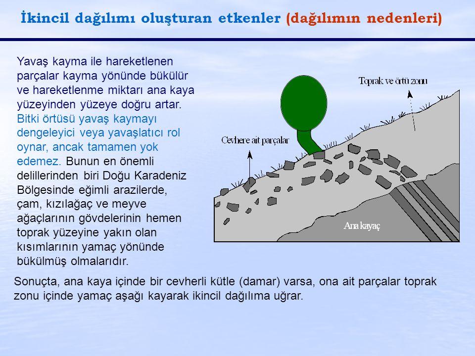 İkincil dağılımı oluşturan etkenler (dağılımın nedenleri)
