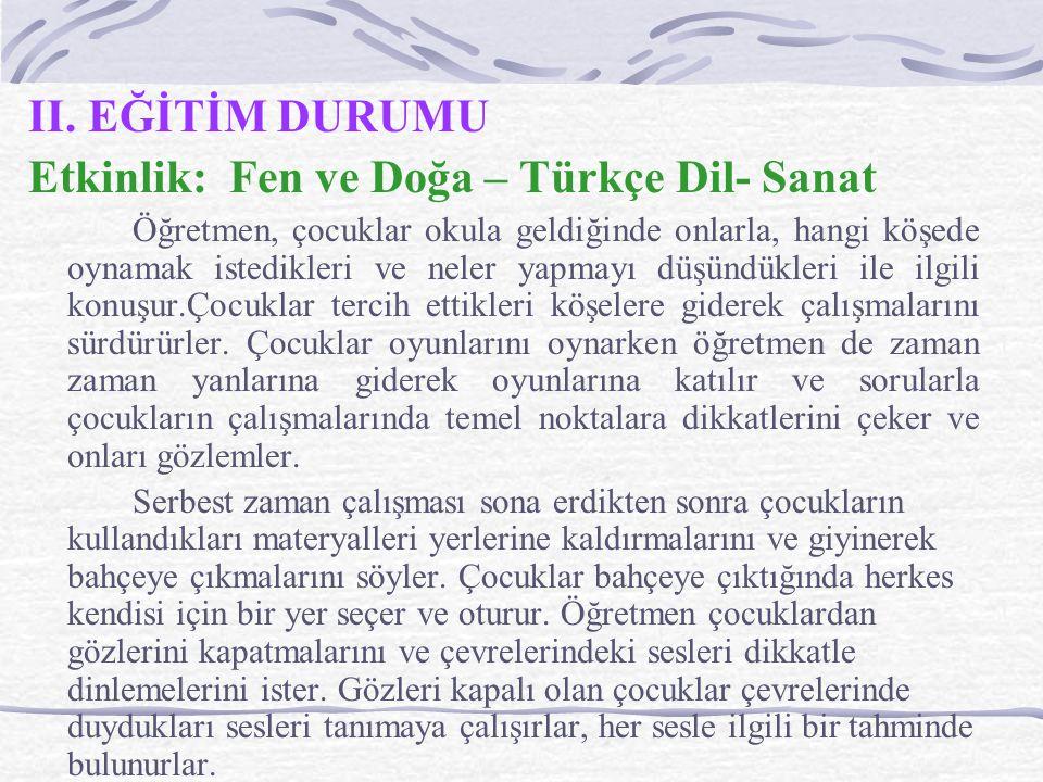Etkinlik: Fen ve Doğa – Türkçe Dil- Sanat