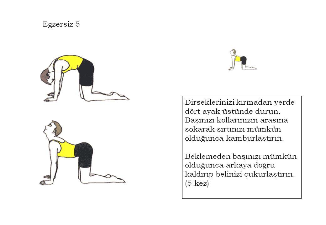 Egzersiz 5 Dirseklerinizi kırmadan yerde dört ayak üstünde durun. Başınızı kollarınızın arasına sokarak sırtınızı mümkün olduğunca kamburlaştırın.