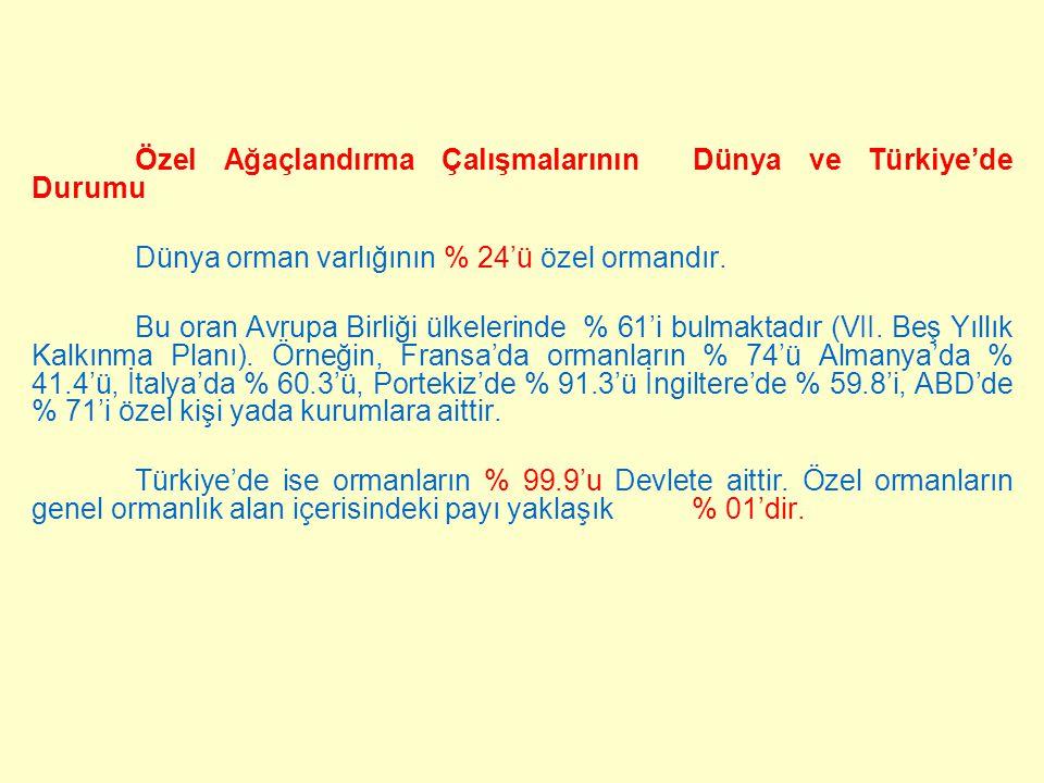 Özel Ağaçlandırma Çalışmalarının Dünya ve Türkiye'de Durumu