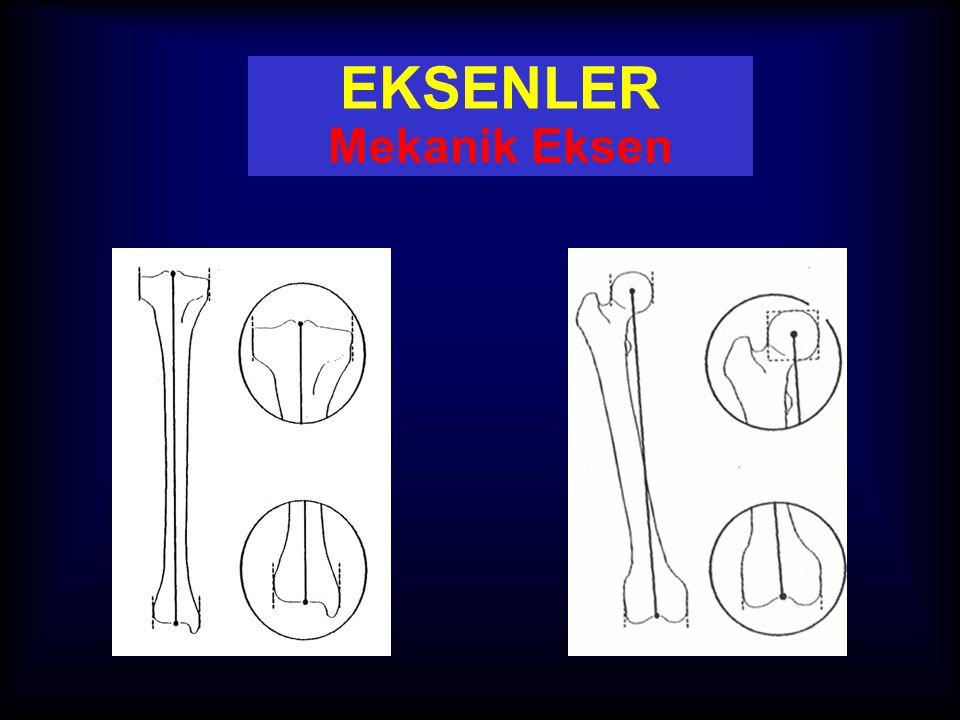 EKSENLER Mekanik Eksen