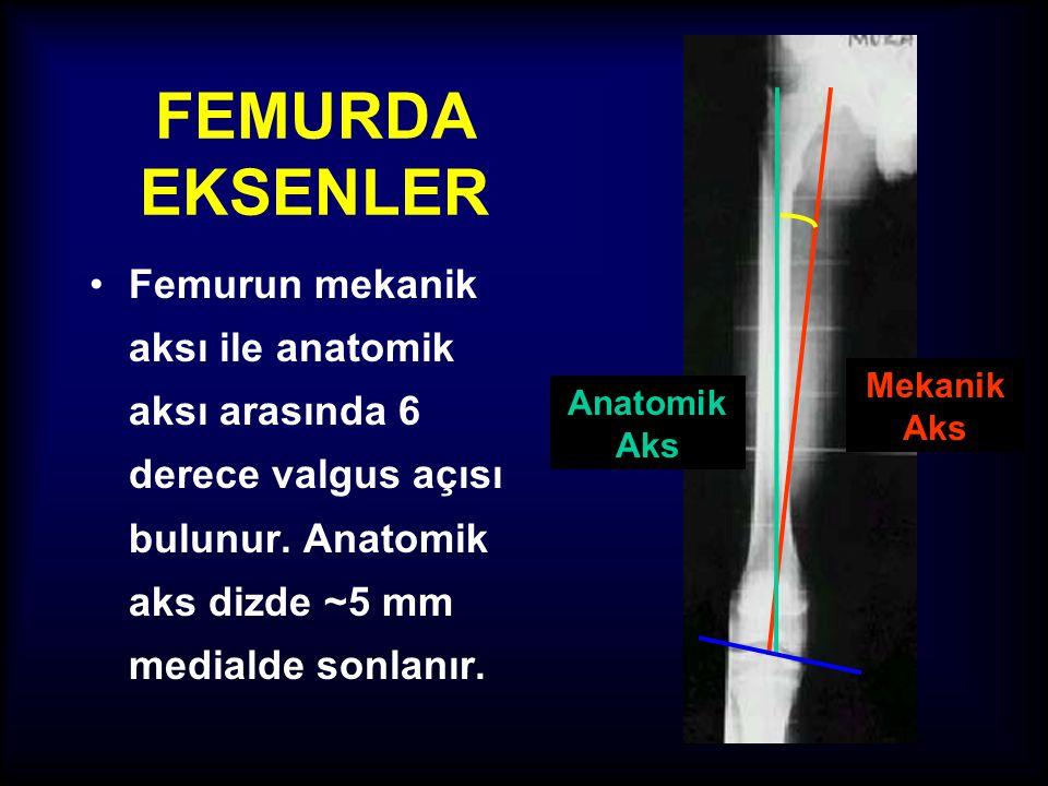 Mekanik Aks Anatomik Aks. FEMURDA EKSENLER.