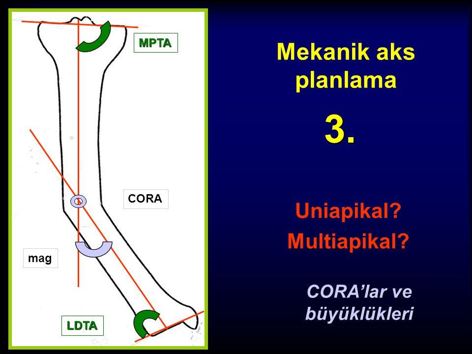 Uniapikal Multiapikal