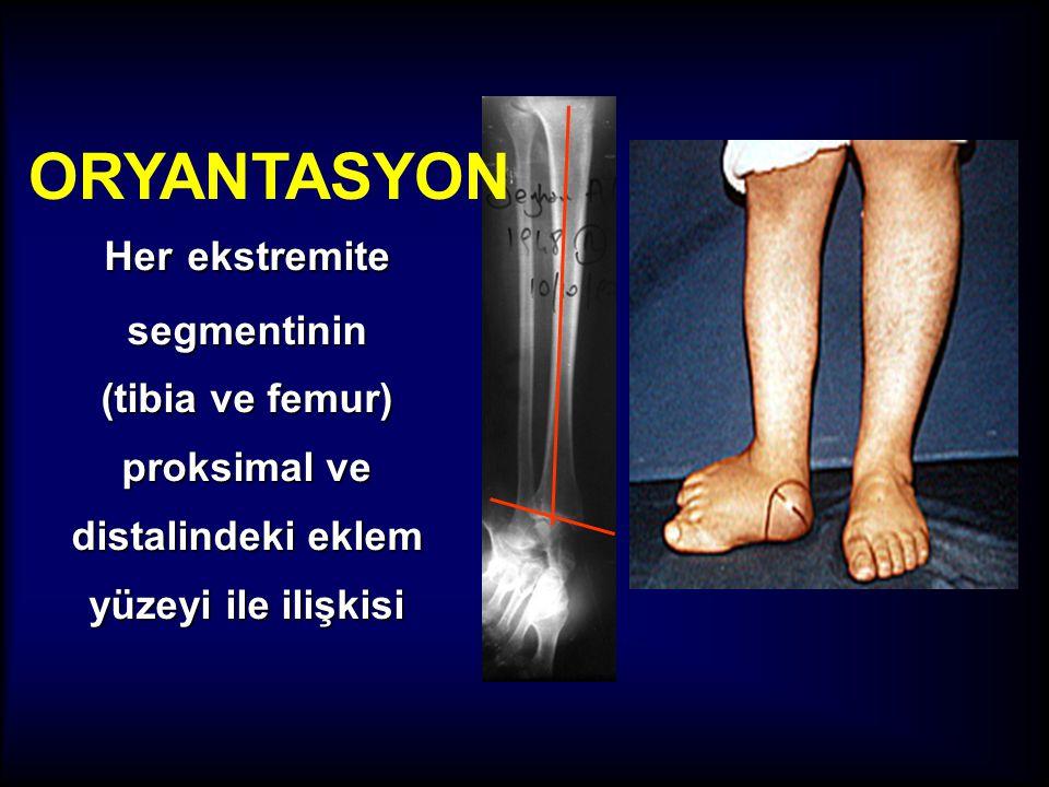 ORYANTASYON Her ekstremite segmentinin (tibia ve femur) proksimal ve distalindeki eklem yüzeyi ile ilişkisi.