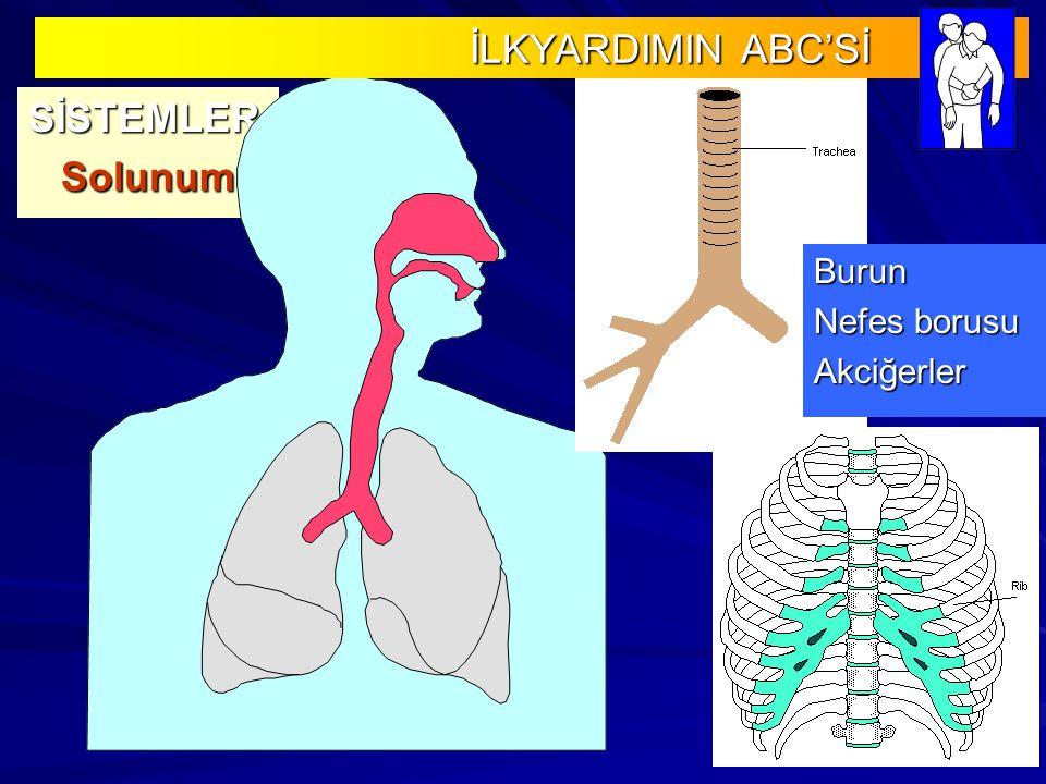 İLKYARDIMIN ABC'Sİ SİSTEMLER Solunum Burun Nefes borusu Akciğerler