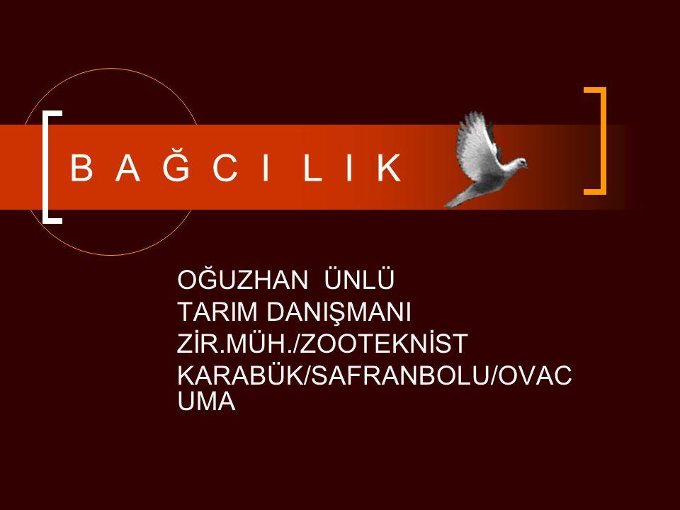 B A Ğ C I L I K OĞUZHAN ÜNLÜ TARIM DANIŞMANI ZİR.MÜH./ZOOTEKNİST