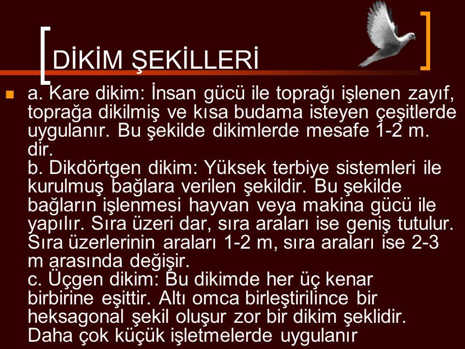 DİKİM ŞEKİLLERİ