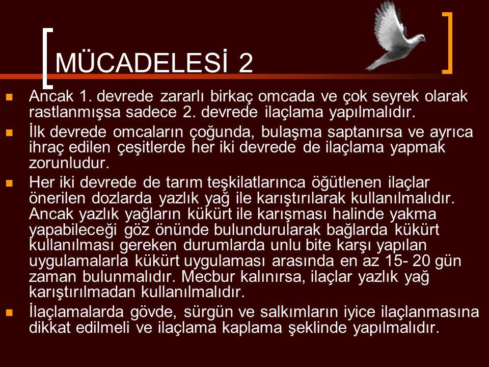 MÜCADELESİ 2 Ancak 1. devrede zararlı birkaç omcada ve çok seyrek olarak rastlanmışsa sadece 2. devrede ilaçlama yapılmalıdır.
