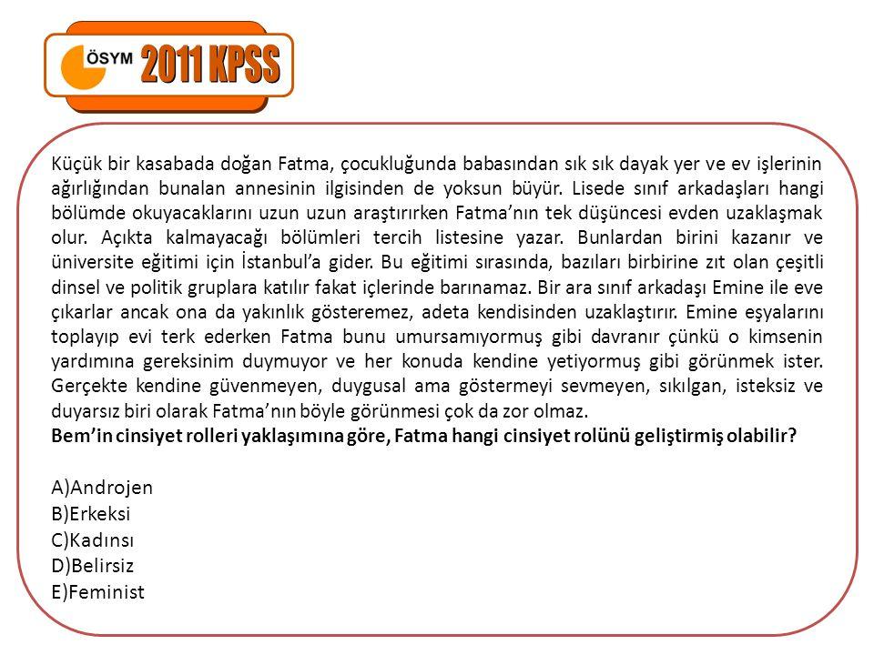 2011 KPSS Androjen Erkeksi Kadınsı Belirsiz Feminist