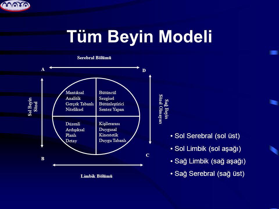 Tüm Beyin Modeli Sol Serebral (sol üst) Sol Limbik (sol aşağı)