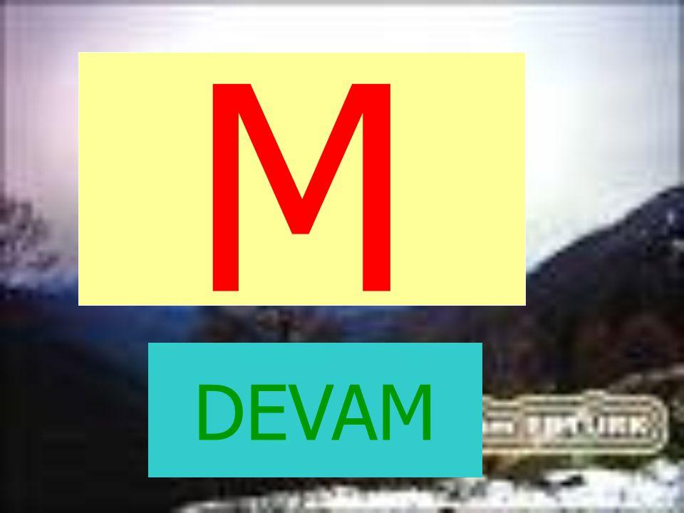 M DEVAM