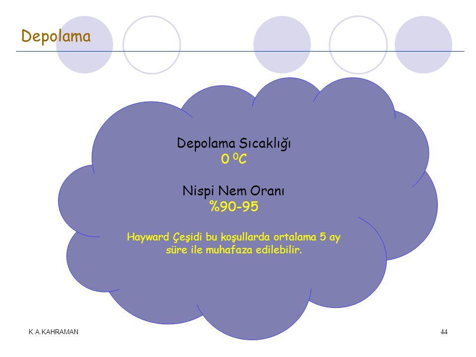 Depolama Depolama Sıcaklığı 0 0C Nispi Nem Oranı %90-95
