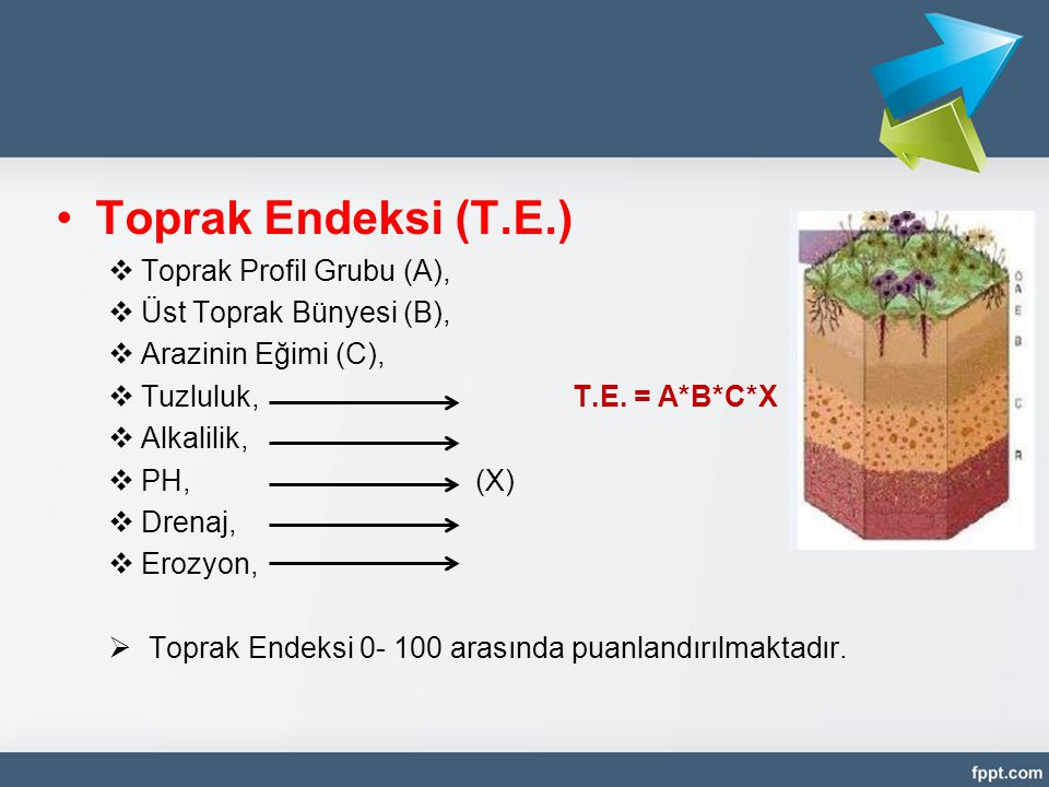 Toprak Endeksi (T.E.) Toprak Profil Grubu (A), Üst Toprak Bünyesi (B),