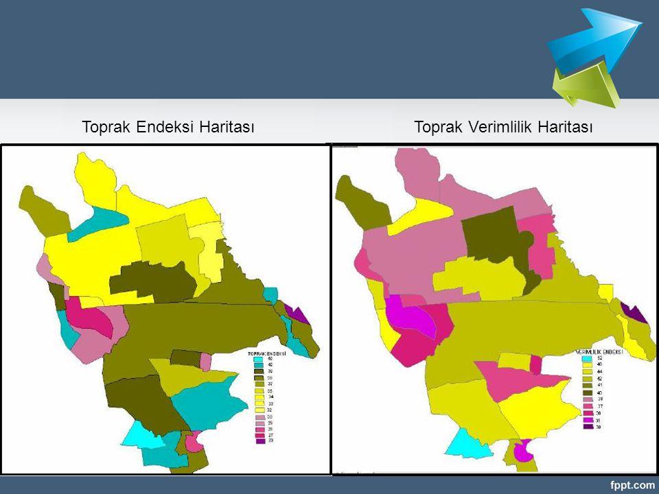 Toprak Endeksi Haritası