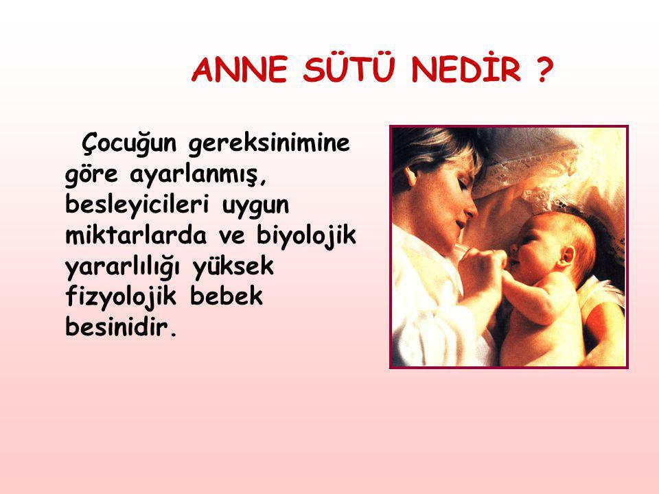 ANNE SÜTÜ NEDİR .