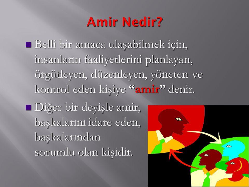 Amir Nedir