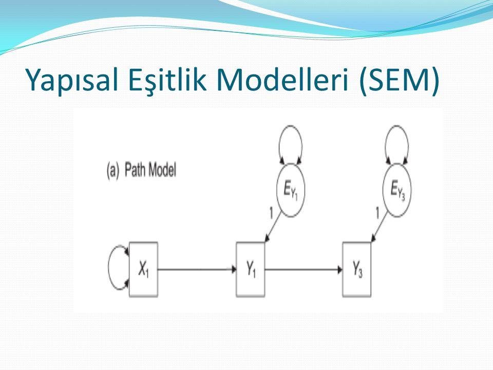 Yapısal Eşitlik Modelleri (SEM)