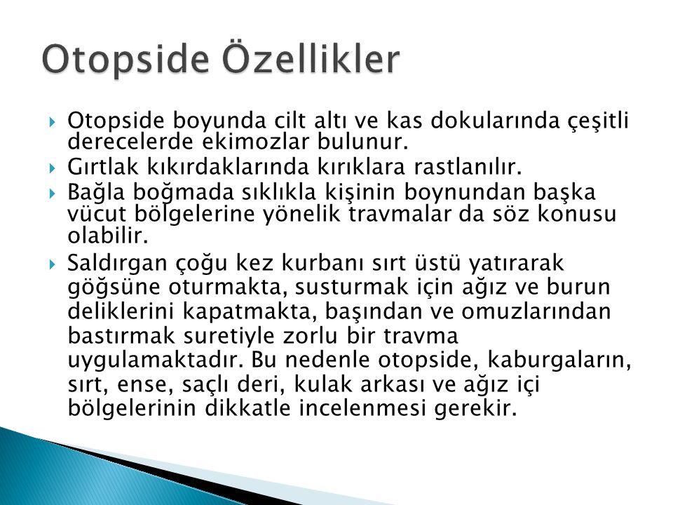 Otopside Özellikler Otopside boyunda cilt altı ve kas dokularında çeşitli derecelerde ekimozlar bulunur.
