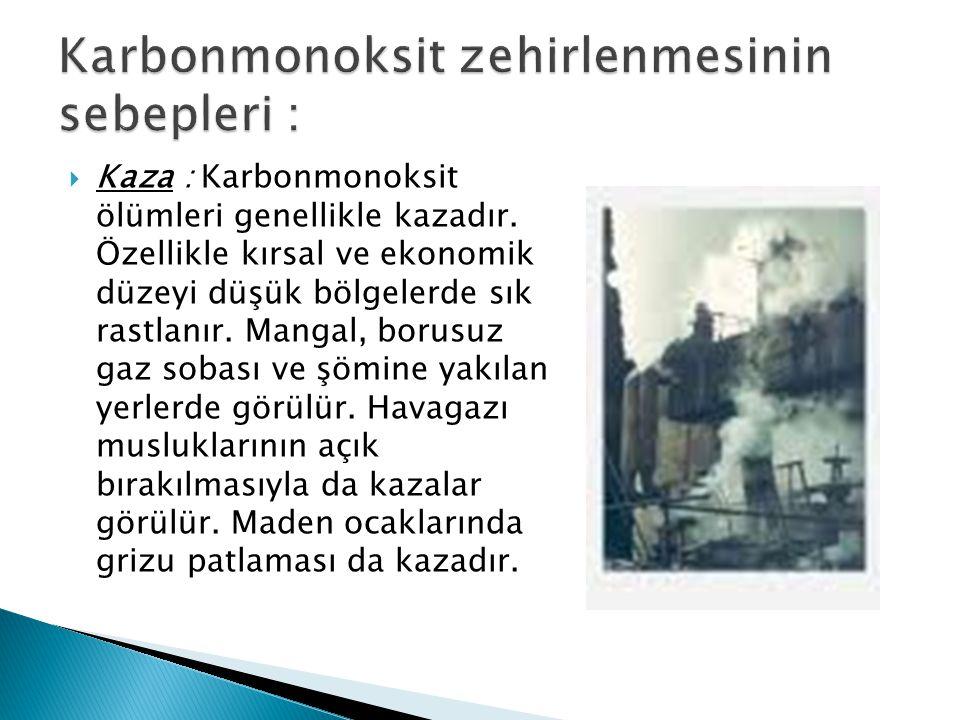 Karbonmonoksit zehirlenmesinin sebepleri :