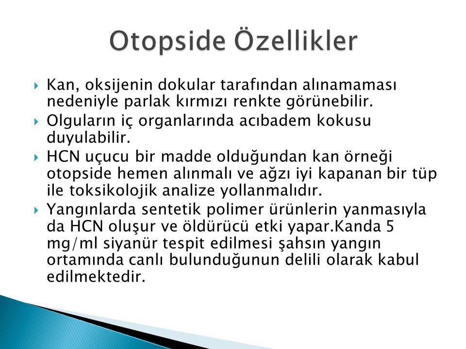 Otopside Özellikler Kan, oksijenin dokular tarafından alınamaması nedeniyle parlak kırmızı renkte görünebilir.