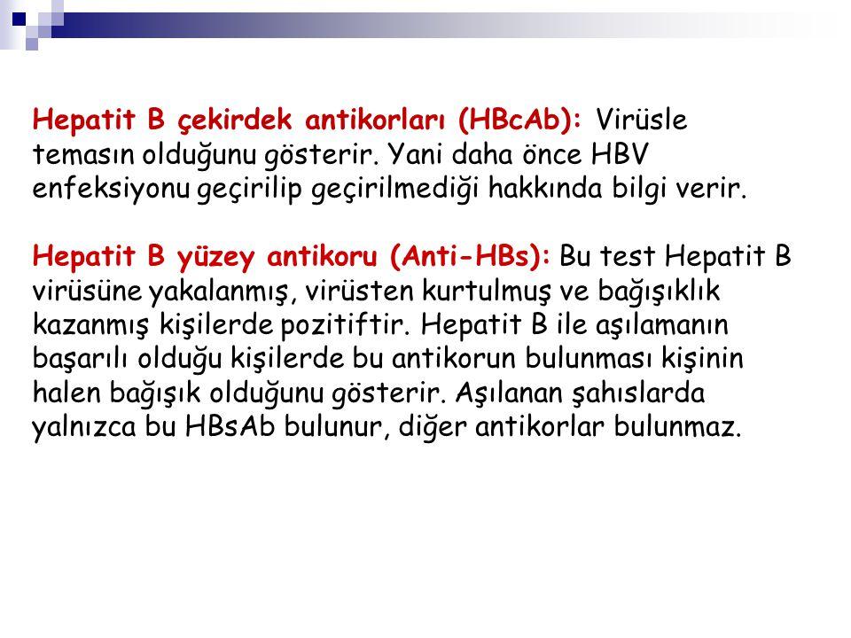 Hepatit B çekirdek antikorları (HBcAb): Virüsle temasın olduğunu gösterir. Yani daha önce HBV enfeksiyonu geçirilip geçirilmediği hakkında bilgi verir.