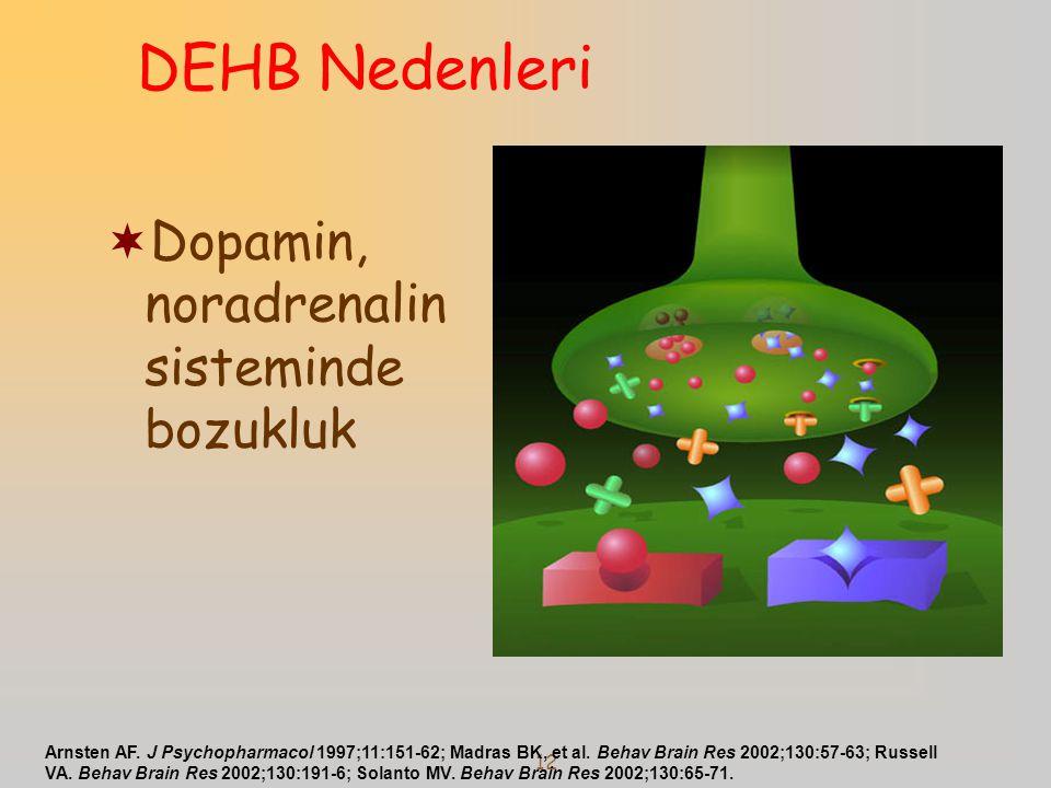 DEHB Nedenleri Dopamin, noradrenalin sisteminde bozukluk