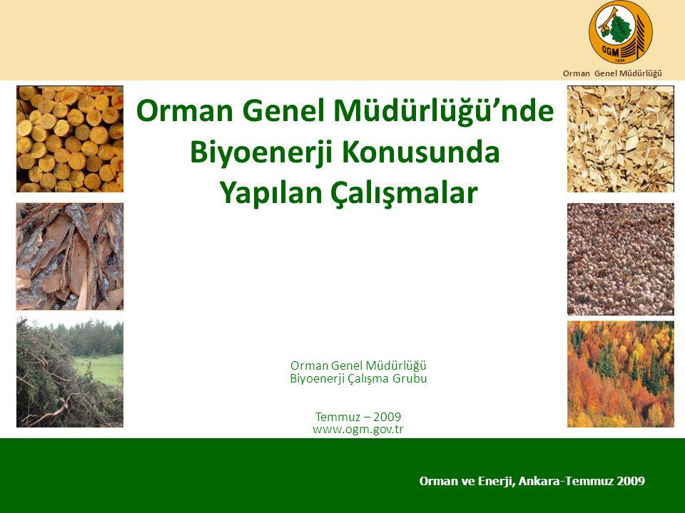 Orman Genel Müdürlüğü'nde Biyoenerji Konusunda Yapılan Çalışmalar