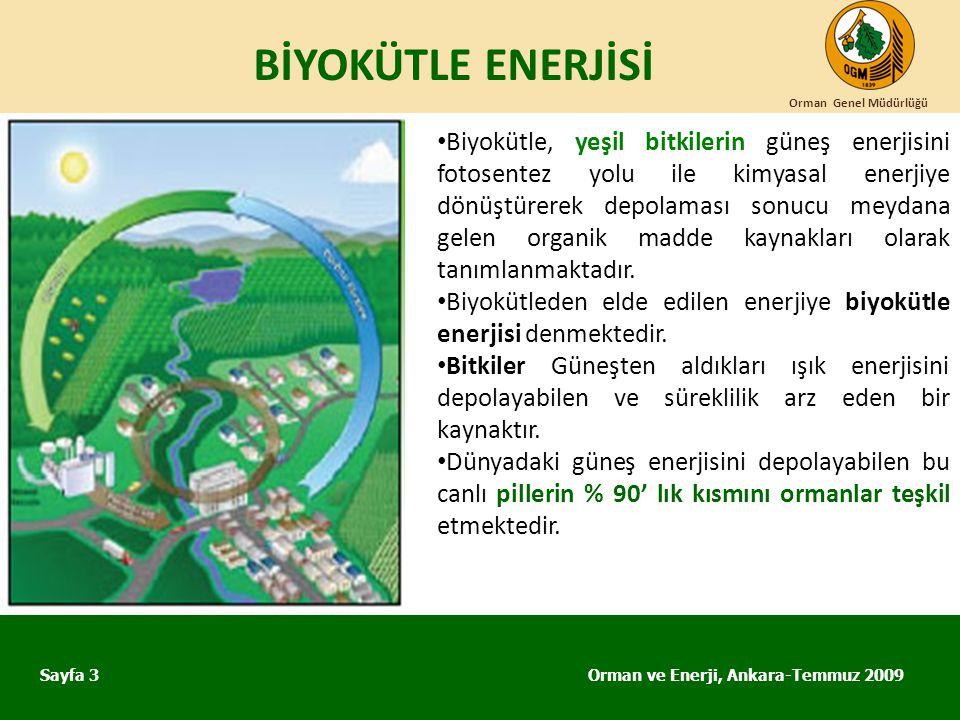 BİYOKÜTLE ENERJİSİ Orman Genel Müdürlüğü.