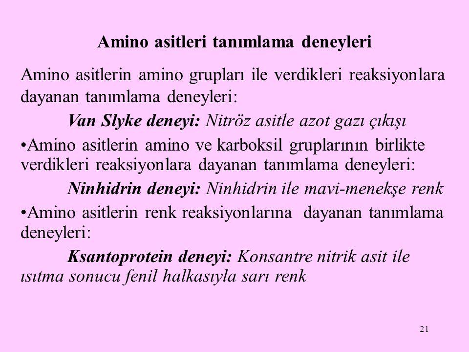 Amino asitleri tanımlama deneyleri