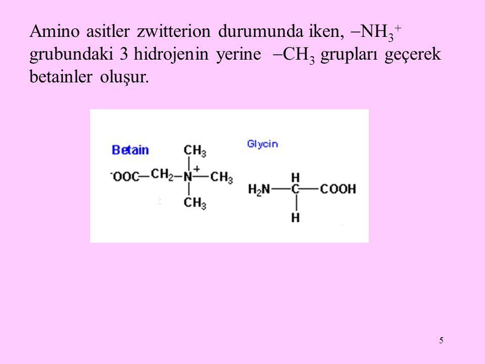 Amino asitler zwitterion durumunda iken, NH3 grubundaki 3 hidrojenin yerine CH3 grupları geçerek betainler oluşur.