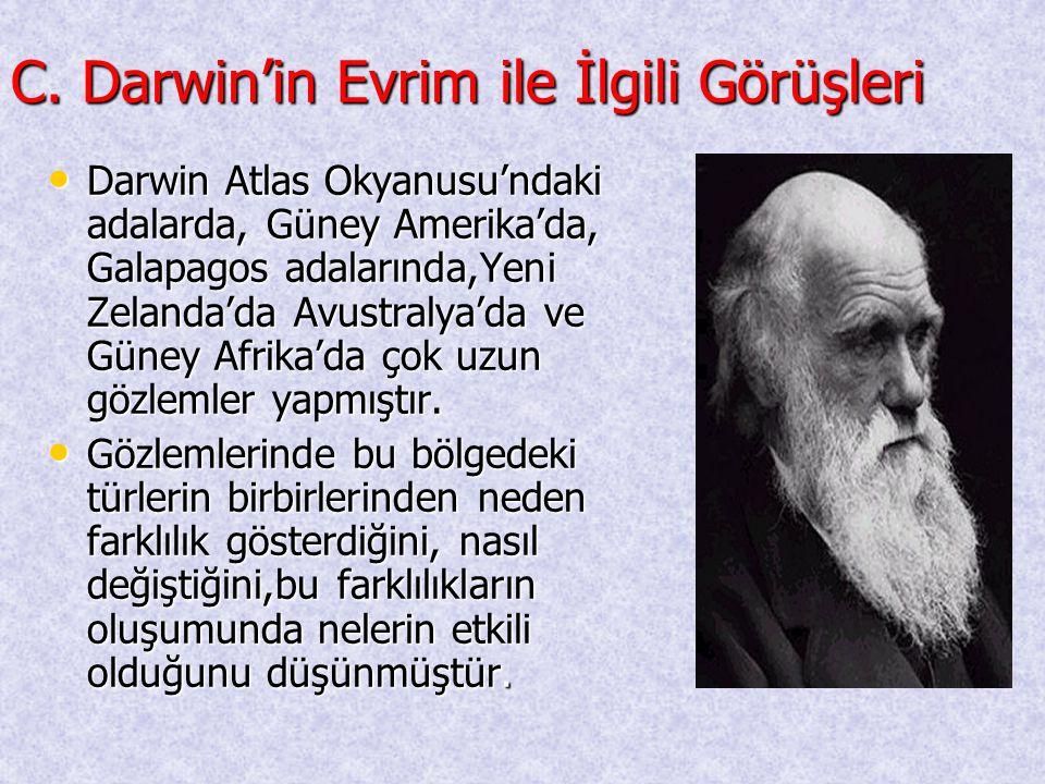 C. Darwin'in Evrim ile İlgili Görüşleri