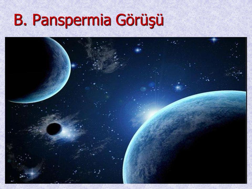 B. Panspermia Görüşü