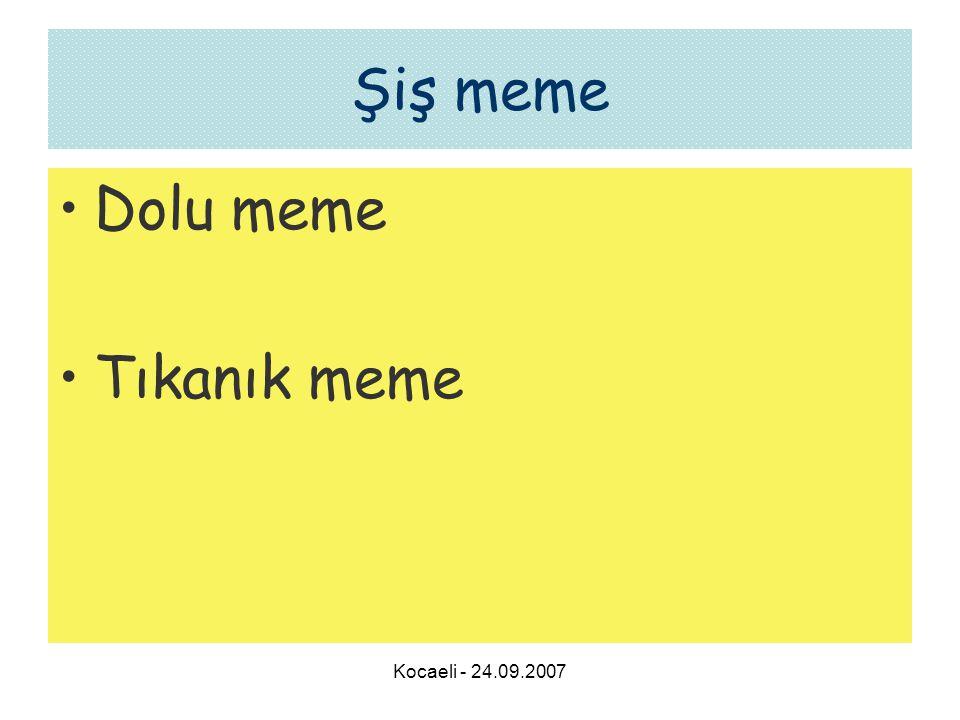 Şiş meme Dolu meme Tıkanık meme Kocaeli - 24.09.2007