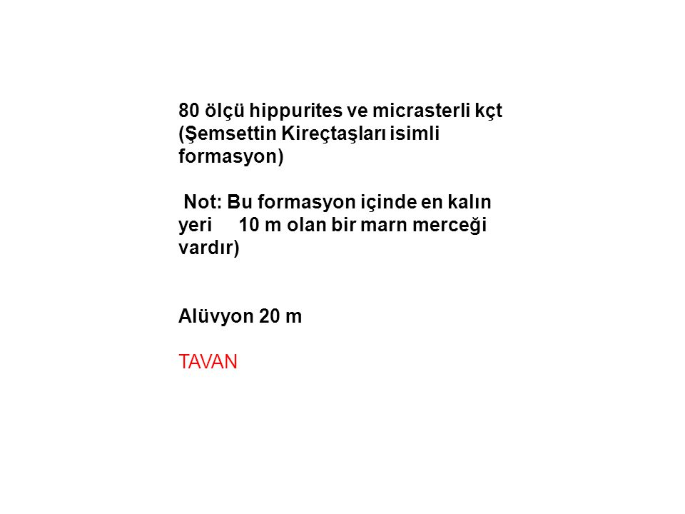 80 ölçü hippurites ve micrasterli kçt (Şemsettin Kireçtaşları isimli formasyon)