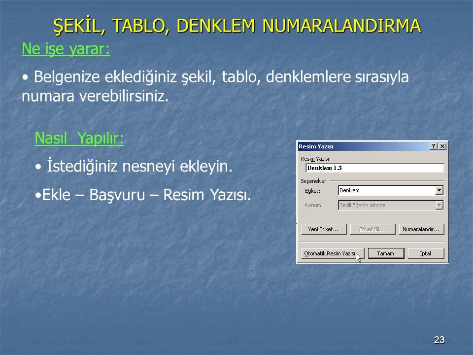 ŞEKİL, TABLO, DENKLEM NUMARALANDIRMA
