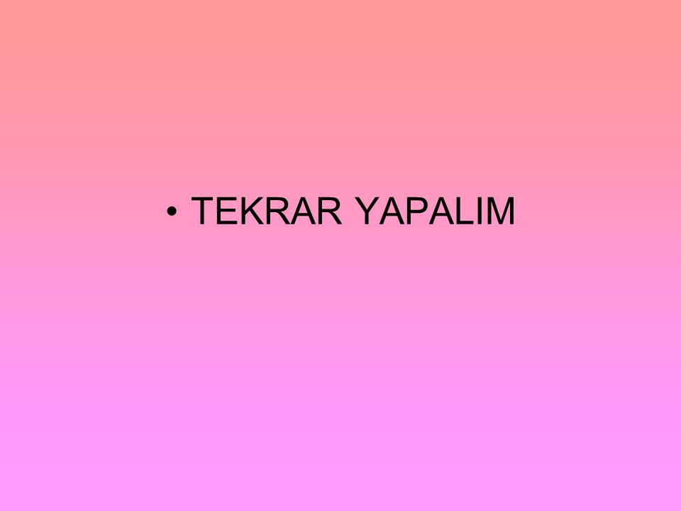 TEKRAR YAPALIM