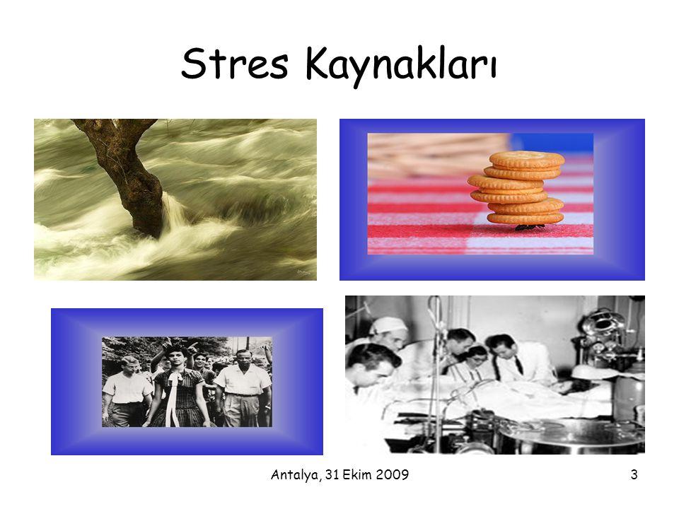 Stres Kaynakları Antalya, 31 Ekim 2009