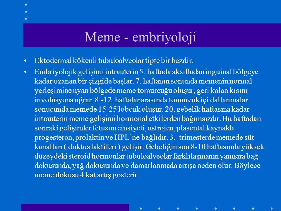 Meme - embriyoloji Ektodermal kökenli tubuloalveolar tipte bir bezdir.