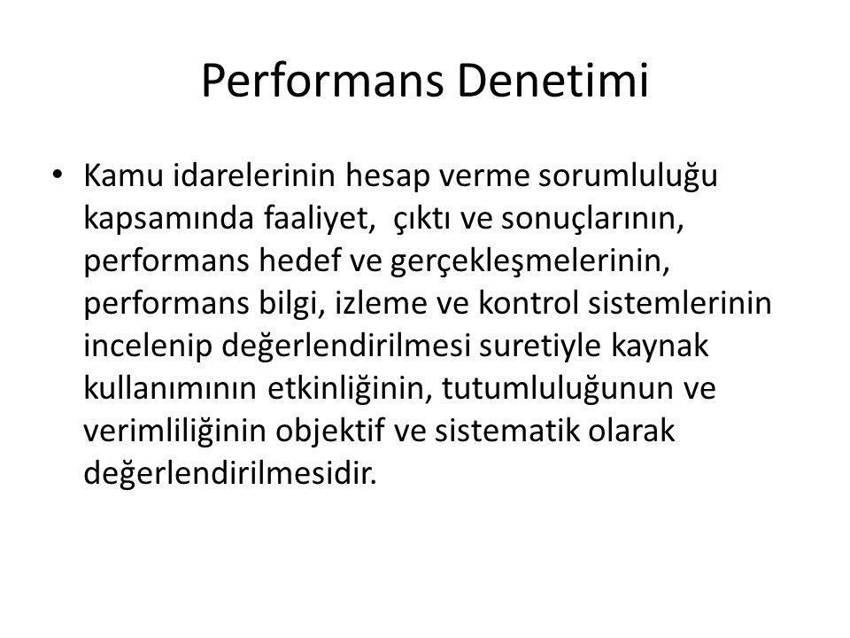 Performans Denetimi
