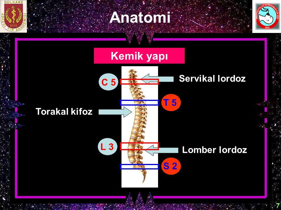 Anatomi Kemik yapı Servikal lordoz C 5 T 5 Torakal kifoz L 3