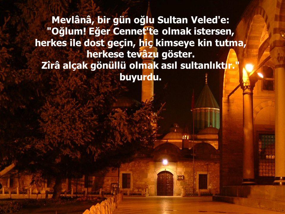 Mevlânâ, bir gün oğlu Sultan Veled e: