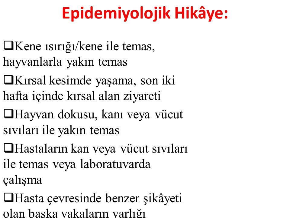 Epidemiyolojik Hikâye:
